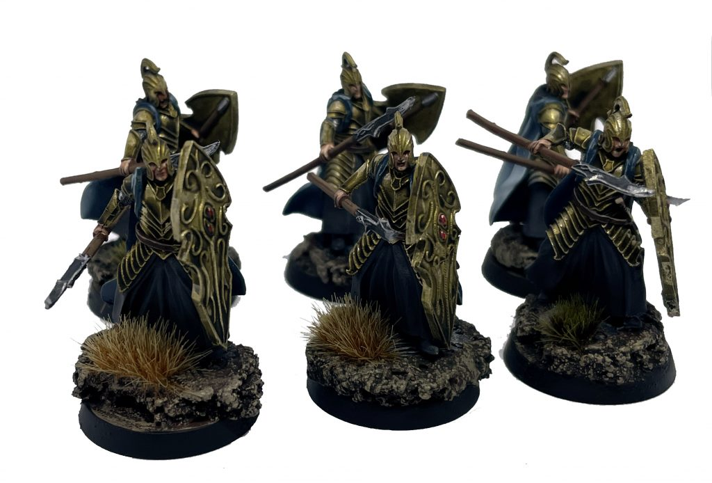 High elf warrior with shield and spear rivendell